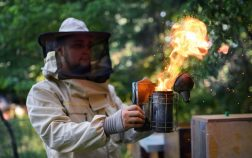 How Does A Bee Smoker Work